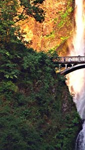 Multnomah Falls near Interstate 84 is west of the Bridge of the Gods