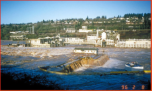 the Willamette Falls
