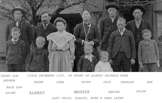 The Albert