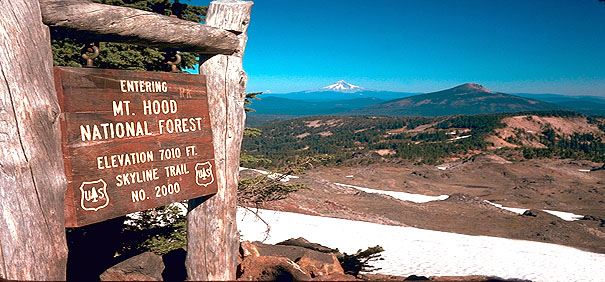 Park Butte Crossing is one of the most awesome and most snow-choked of the 7000 ft-plus PCT trail segments in Oregon