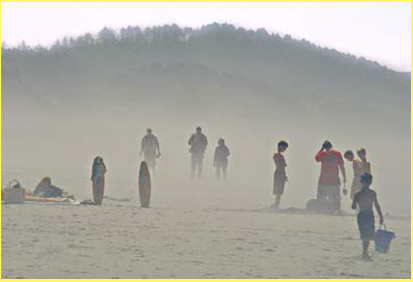 Oregon Coastal mists and fogs at Beverly Beach Park
